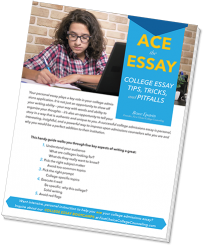 essay tips cover2